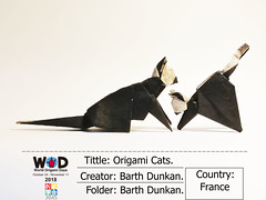 W.O.D. 2018  Origami Cats - Barth Dunkan. (Magic Fingaz) Tags: barthdunkancatchatgatokittenorigamiorigamicatgatto kedi kočka kot kucing mačka paperfolding γάτα кіт мачка ネコ猫 worldorigamidays2018 wod