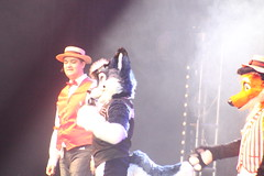 IMG_9026 (South Kitsune) Tags: fursuit furries furcon costumes cosplays caliur furry fandom