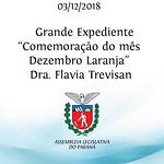 Grande Expediente - Comemoração do mês Dezembro Laranja - apresentação da Dra. Flavia Trevisan
