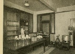 This image is taken from Page 787 of Annual report of the State Board of Health of the state of Ohio, for the year ending .., 1912 (Medical Heritage Library, Inc.) Tags: ohio state board health public columbialongmhl medicalheritagelibrary columbiauniversitylibraries americana date1886 idannualreportofst1912ohio