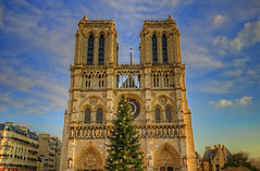 Notre Dame Christmas Tree Painting (cmfgu) Tags: craigfildesphotography artist artistic photographer photograph photo picture art craigfildesfineartamericacom fineartamericacom craigfildespixelscom prints wall canvasprint framedprint acrylicprint metalprint woodprint greetingcard throwpillow duvetcover totebag showercurtain phonecase mug yogamat fleeceblanket spiralnotebook sale sell buy purchase gift craigfildes paris france europe europeanunion notredamecathedral notredamedeparis iledelacite 4tharrondissement 4thdistrict rosewindow catholic french gothic church flyingbuttress 1163ad hdr highdynamicrange