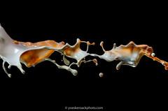 Splash vanille-butterscotch (Yves Kéroack) Tags: midair caramel organique butterscotch macro studio liquidart motion lait liquid mouvement milk water liquide splash organic