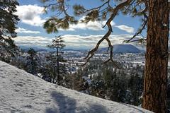 Zion: Kolob Terrace (swissuki) Tags: us ut winter zion landscape national park snow kolob terasse supershot