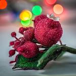 Happy Holidays! thumbnail