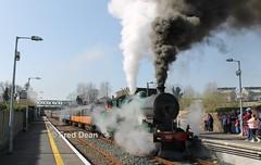 R.P.S.I. 461 in Gorey. (Fred Dean Jnr) Tags: march2012 wexford dublinwicklowwexfordrailway iarnrodeireann irishrail sparelinkrailtour rpsi cravencoaches cravens railpreservationsocietyofireland gorey goreystationwexford 461 steamlocomotive