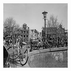Amsterdam (rjvanderzalm) Tags: rolleiflex fomapan 400200 caffenol 120film