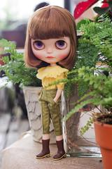Vintage Styles (Ylang Garden) Tags: blythe momoko top pant