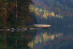 Light (Mountain's photographer) Tags: 2018 alps austria langbathseen salzkamergut autumn landscape outdoor