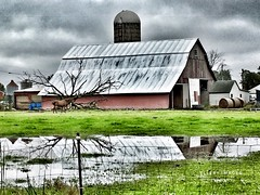 Out To Pasture (Ellery Images) Tags: reflection elleryimages silo water fence countryside horse rural farm pasture barn