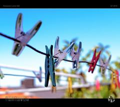 Higeldy Pigeldy (tomraven) Tags: clothesline pegs clothespegs line bokeh dof aravenimage tomraven bluesky q12019 lumix g85