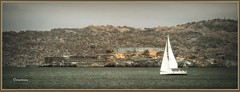843. A moment in San Francisco #380 - Sailing past Alcatraz Island - Alcatraz Island 4 (Oscardaman) Tags: 843 a moment san francisco 380 sailing past alcatraz island 4