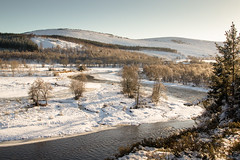 River Dee (StickyToffeeQueen) Tags: riverdee aberdeenshire snow