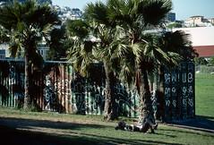 San Francisco, California (Roger Gerbig) Tags: sanfrancisco california dolorespark missiondistrict rogergerbig canoneos3 canonef28105f3545 kodachrome64pkr64 slidefilm 135film 35mm