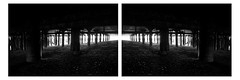 Beneath (David Ian Ross) Tags: diptych miroir reflection reversed mirrored pier symmetry beneath dessous