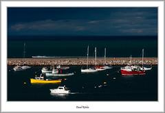 Tranquility In The Marina (flatfoot471) Tags: 2016 70300canon boats devon england fishing holiday july marina normal summer unitedkingdom urban brixham gbr