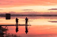 Los cazadores... (José Ferrando) Tags: arrozales carmenpla elperelló emiliopérez javibenedito leoferrer marjal paisaje sueca valencia ximotorres canon6d otoño2018 reflejos