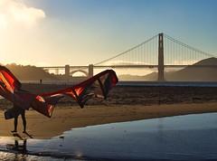 packing up the kite (kate beale) Tags: kiteboarding kiteboard goldengatebridge golden hour sanfrancisco sanfranciscobay crissyfield reflection