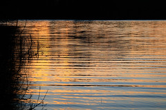 Lippajärvi (Antti Tassberg) Tags: lippajärvi reflection auringonlasku syksy landscape yö järvi espoo aurinko autumn dark fall lake lowlight night nightscape sun sundown sunset uusimaa finland fi