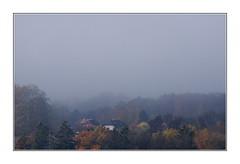 Les sanglots longs des violons de l'automne... (Baudelaire) / Châtillens - Suisse romande (PtiteArvine) Tags: automne brouillard brume village arbres châtillens suisse romandie