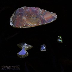 no two alike -- ammolite (zawaski -- Thank you for your visits & comments) Tags: alberta beauty canada canmore naturallight noflash zawaski©2018 rockymountains calgary love crosses ambientlight ammolite canonef50mmf25macro ©2019robertzawaski ©2019 robert zawaski ©2019zawaski finephotography photog ambieantlight