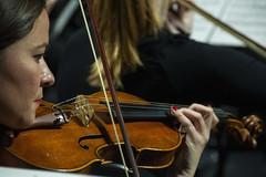 Violín al detalle (Guillermo Relaño) Tags: guillermorelaño nikon d90 especial ¿porqueesespecial cameratamusicalis orquesta orchestra teatro nuevoapolo nuevomundo dvorak sinfonia novena 9 nueve violin