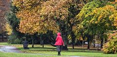 Little red riding hood (Frank Fullard) Tags: frankfullard fullard candid street portrait fable red trees forest autumn littleredridinghood legend kilkenny irish ireland