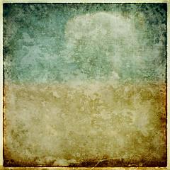 Textura NC # 006 (osolev) Tags: layer capa textura texture ps cs5 brushes pinceles grunge square cuadrada