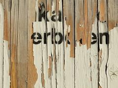 good to know (vertblu) Tags: fence sitefence hoarding constructionhoarding constructionsitefence boards paint paintedwood painted oldpaint peelingpaint postnobills sticknobills plakatierenverboten decay weatheredpaint weathered weatheredwood label labelled vertblu lines linien message textures textur grain vein wavygrain