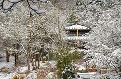 Deep Nepal winter (werner boehm *) Tags: wernerboehm nepal nepalpagoda westparkmunich winter snow branches