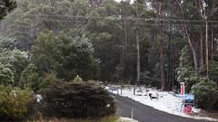 Wellington Falls