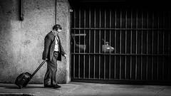 Dejected (Sean Lancaster) Tags: california san francisco bw dejected suitcase street emount man samyang 135 rokinon black white 1352 photography iphoto blackandwhite sanfrancisco streetphotography