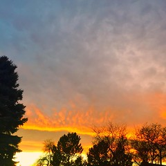 December 10, 2018 - An insanely beautiful sunset. (Mary Lindow)