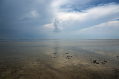 Camargue, 2018 (masowar (often off, sorry!!)) Tags: france francia camargue landscape paesaggio clouds nuvola nuvole emptyness vuoto pacefully reflection reflections riflesso riflessi ©massimilianoacquisti massimilianoa masowar massimilianoacquisti nikkor nikond800