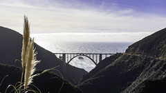 Bixby Bridge, CA (punahou77) Tags: bigsur bixbybridge pampas punahou77 pacificocean bridge ocean california clouds stevejordan sky roadtrip nature nikond500 nikon landscape seascape