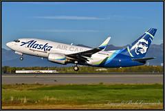 N625AS Alaska Airlines Cargo (Bob Garrard) Tags: n625as alaska airlines boeing 737 cargo anc panc
