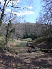 19o1591 (kimagurenote) Tags: tree sky 東高根森林公園 higashitakane forest park 川崎市宮前区 miyamaekawasaki