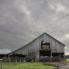Barn, Brush Prairie (lamoustique) Tags: brushprairie washington usa barn sky clouds