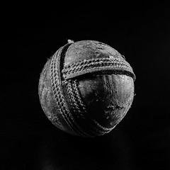 Something's not right! (bp-122) Tags: centersquarebw macromondays cricket ball boredom human bored