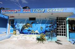 Punta Allen (Puce d'eau) Tags: restaurant tulum mexique quintana roo yucatan tag streetart peinture tortue canon eos 7d 1018mm dessin bar