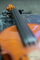 """foto adam zyworonek fotografia lubuskie iłowa-5359 • <a style=""""font-size:0.8em;"""" href=""""http://www.flickr.com/photos/146179823@N02/44487021070/"""" target=""""_blank"""">View on Flickr</a>"""