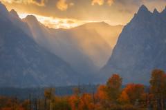 Gushing (Michael Rickard) Tags: nationalpark grandteton teton canyon sunset gorge autumn colors orange gold mountains wyoming west