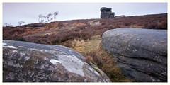 Over Owler Tor, Peak District(3) (S.R.Murphy) Tags: december2018 derbyshire landscape overowlertor peakdistrict surpriseview fujifilmxt2 wideangle rock rocks geology england britain greatbritain nationaltrust lee06ndgrad leefilters grass sky mothercap