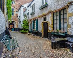 Secret Alleys... Passages secrets... (capvera) Tags: alley secret passage ruelle vlaeykensgang medieval houses sonyimages dsc00235