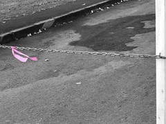 IMG_3075 (uki_cafe) Tags: japan hokkaido nature landscape winter pink chain park monochrome iphone iphonex