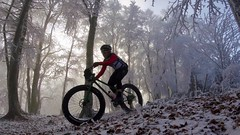Trails? The Forest Is So Much More Fun (29in.CH) Tags: fall autumn fatbike ride 18112018 forest sun fog