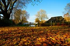 Victoria Park (Ugborough Exile) Tags: stafford staffordshire midlands england uk sony a6300 2018