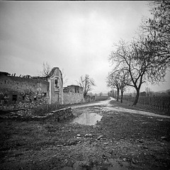 After the flood (Italian Film Photography) Tags: lca120 bergger pancro400 abandoned decay building roccks flood water sky trees dramatic film analogue pellicola silver square landscape devsted abbandono decadenza