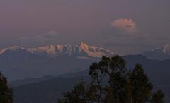 Soft glow of dawn (draskd) Tags: dawn chaukori uttarakhand india landscape kumaonrange kumaonhills maiktoli himalayas mountain daybreak alpenglow mrigthuni
