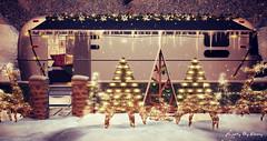 Majesty- This Christmas (Ebony (Owner Of Majesty)) Tags: kraftwork jian fameshed majesty majestysl majesty2018 decor decorating outdoorliving rv christmas christmasspirit christmasseason christmastree christmaslights homedecor homeandgarden homes homesweethome home snow winterwonderland winter trompeloeil tarte dustbunny sways hpmd soy halfdeer applefall lb virtual virtualservices virtualspaces videogames secondlife sl