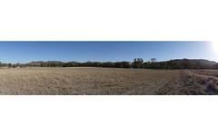 Mount Cobla Rd, Currabubula NSW